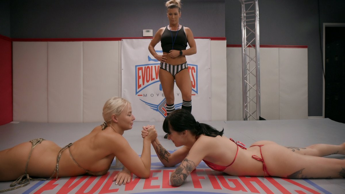 Fight In Porn $19.95 - evolved fights discount (save 34%) - discount porn